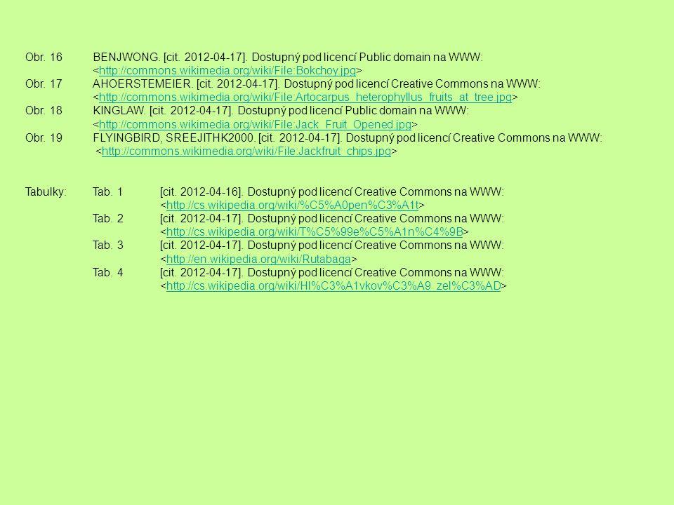 Obr. 16 BENJWONG. [cit. 2012-04-17]. Dostupný pod licencí Public domain na WWW: